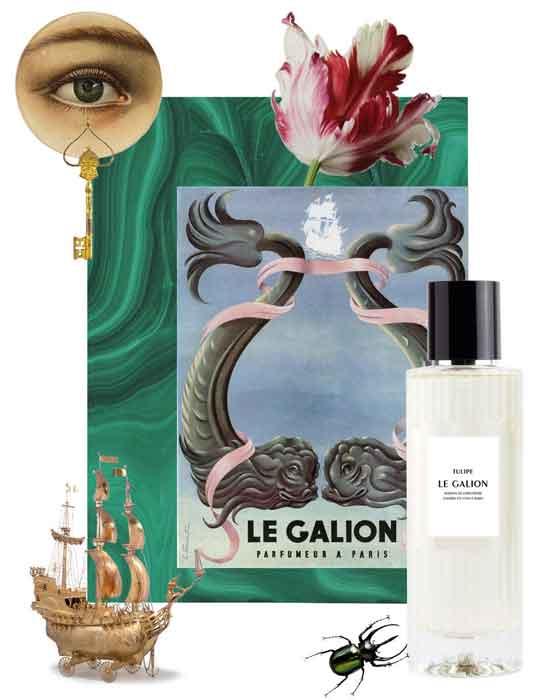 Parfum Tulipe Le Galion Bordeaux
